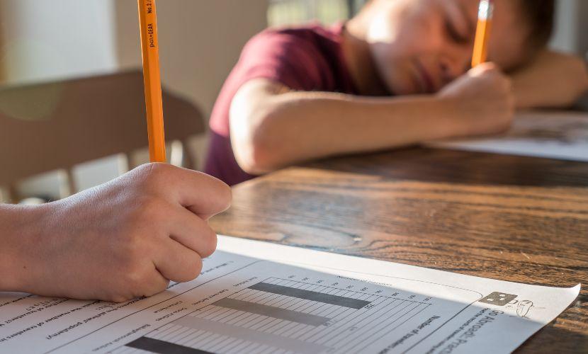 educación curricular en el hogar